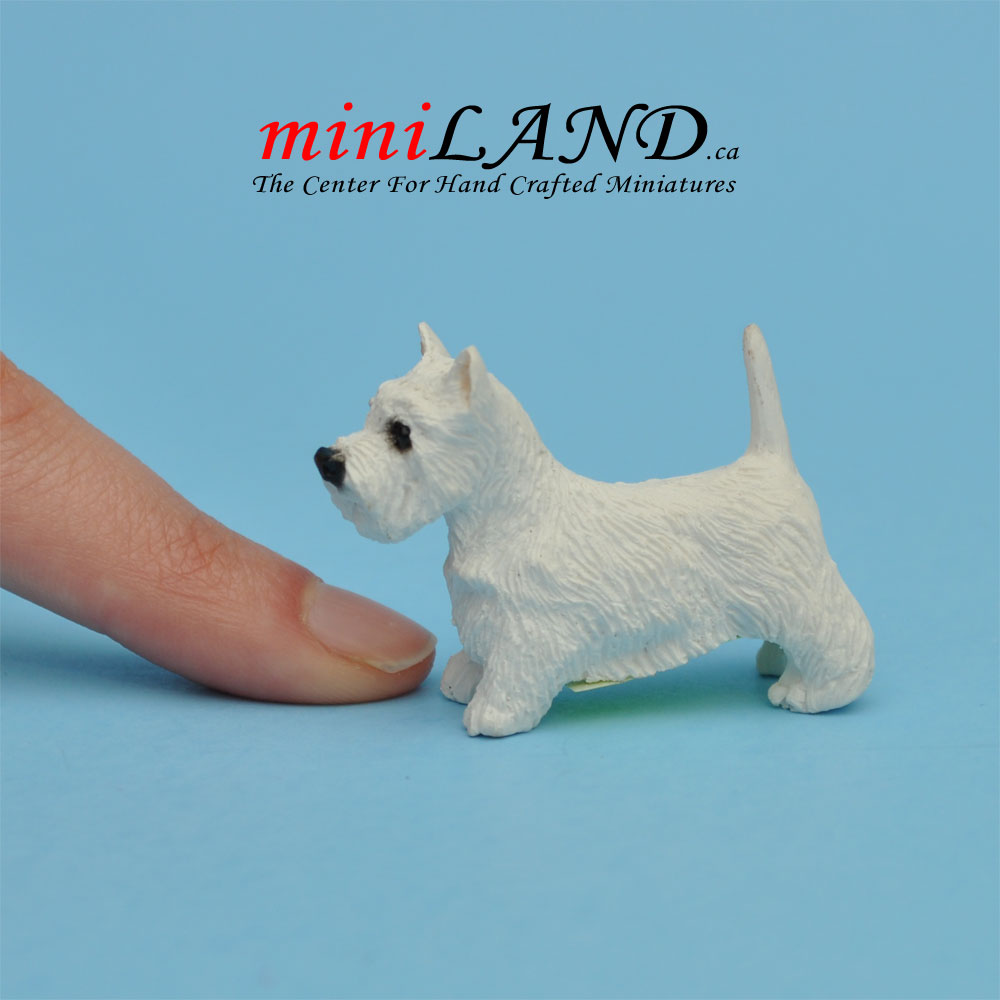 Terrier West Highland Dog For Dollhouse Miniature 1:12 Scale