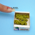 Green Grape Case Dollhouse miniature 1:12 scale