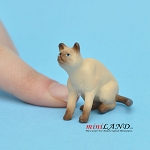 Cat Siamese 1 H/1¼ L/1 W For dollhouse miniatures 1:12 scale