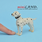 Standing Dalmatian Dog for Dollhouse miniature 1:12 scale