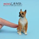 Boxer sitting Dog for Dollhouse miniature 1:12 scale