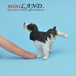 Naughty Springer Spaniel Dog for Dollhouse miniature 1:12 scale