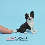 Border Collie  Dog for Dollhouse miniature 1:12 scale