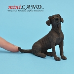 Sitting, Chocolate Lab Labrador Dog for Dollhouse miniature 1:12 scale