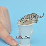 Cat Licking Water grey For dollhouse miniatures 1:12 scale