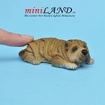 Shar Pei Lying Dog for Dollhouse miniature 1:12 scale