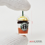 Starbucks  drink  1:12 Scale dollhouse miniature handmade food Star12