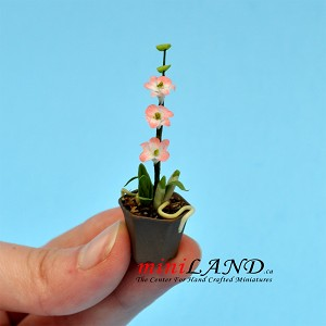 Orchid Dark Purple in pot  for dollhouse miniature 1:12 scale