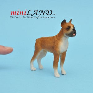 Boxer standing Dog for Dollhouse miniature 1:12 scale