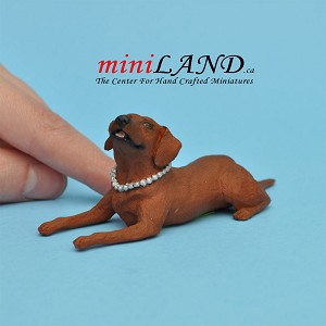 Attentive brown Dog for Dollhouse miniature 1:12 scale