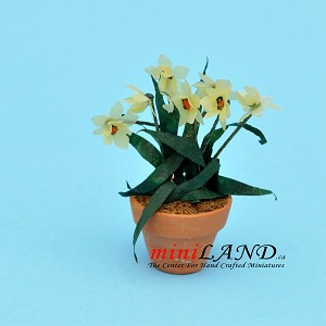 Daffodil hand cafted In Pot for dollhouse miniature 1:12 scale