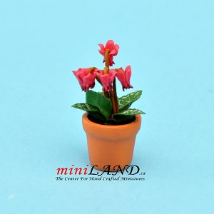Cyclamen pink in pot for dollhouse miniature 1:12 scale