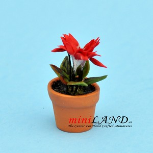 Cyclamen Red in pot for dollhouse miniature 1:12 scale