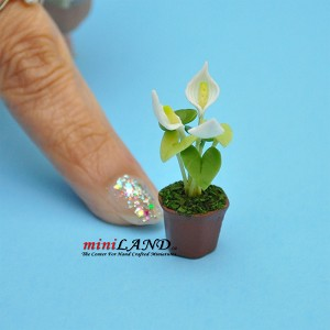 Handmade flowers plant in Terracotta Pot Dollhouse Miniatures  FL010 1:12 scale