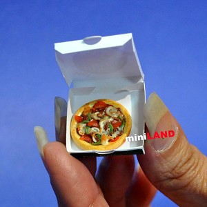 Pizza in box for 1:12 Scale dollhouse miniature handmade food PFZ1